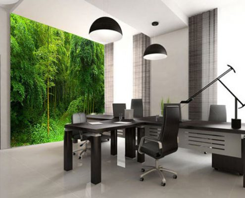 Office Wallpaper Murals Perth - Exclusive Wall Design
