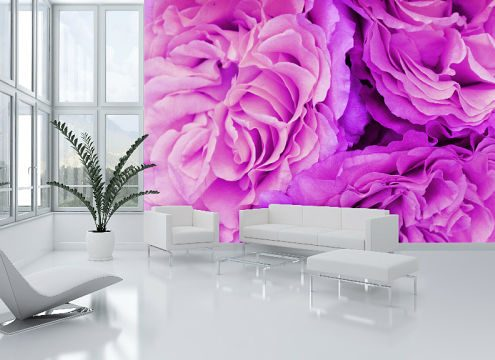 Abstract Wallpaper Murals Perth - Exclusive Wall Design